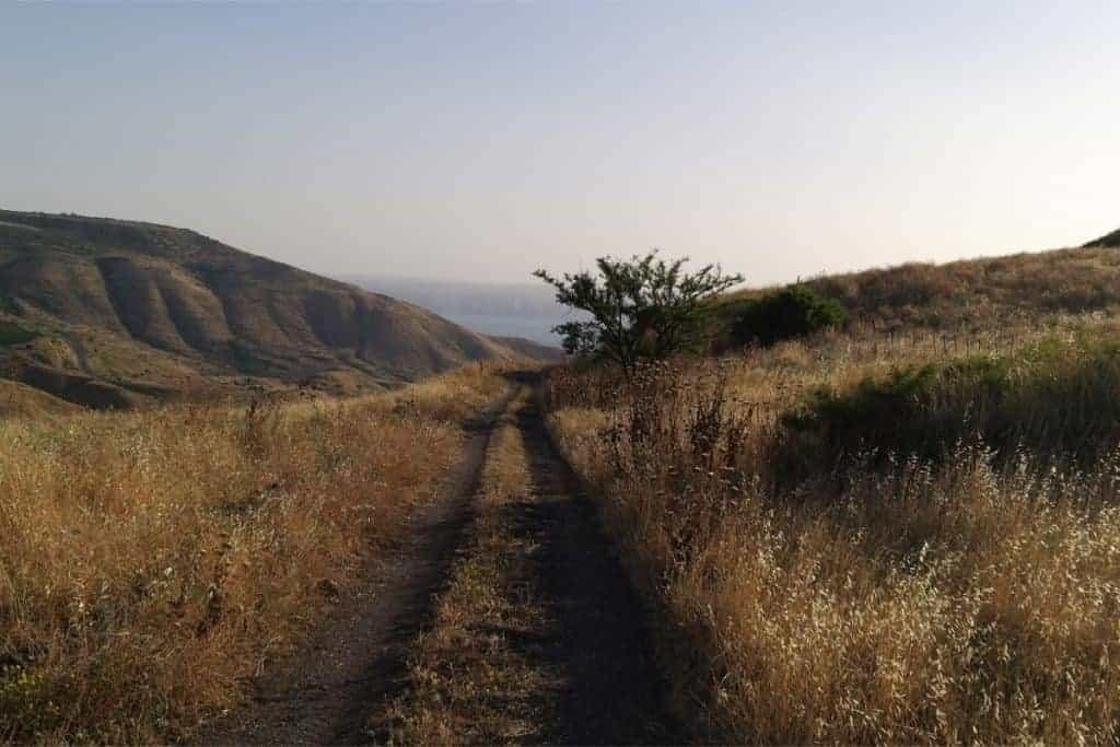 מסע לנחל נקודת החיבור