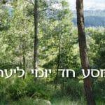 מסע חד יומי ליער
