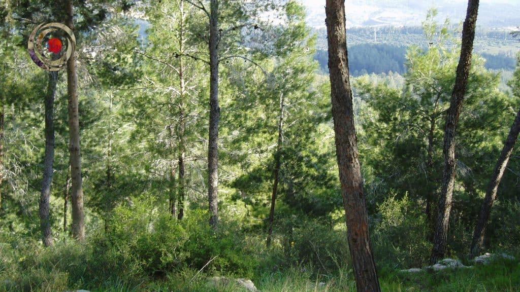 מסע ליער